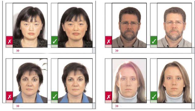 vid-na-zhitelstvo-v-estonii