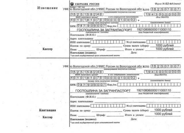 zagranpasport-dlya-rebenka-3