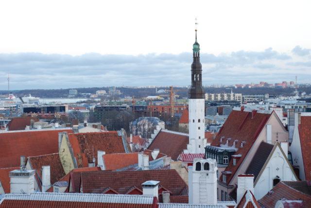 Вид на красные крыши Старого города в Таллине со смотровой площадки
