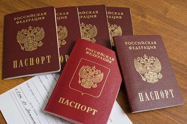 gotovnost-pasporta (2)
