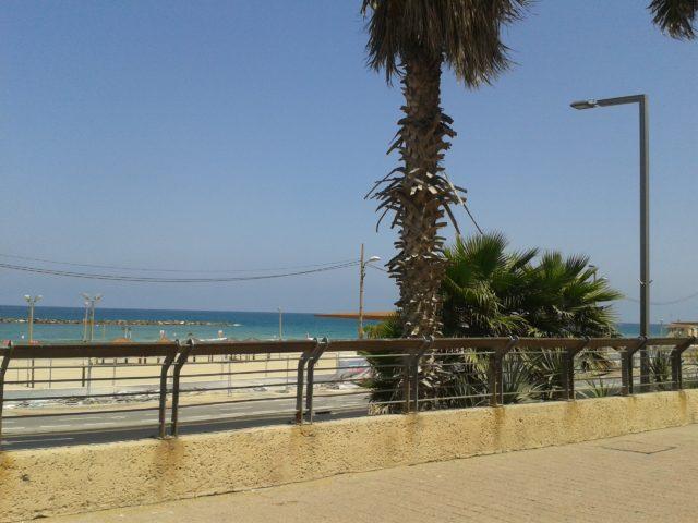 Возле берега моря в Тель-Авиве.