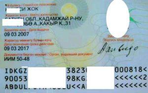 pasport-kirgizii (3)