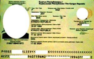 pasport-kirgizii (4)